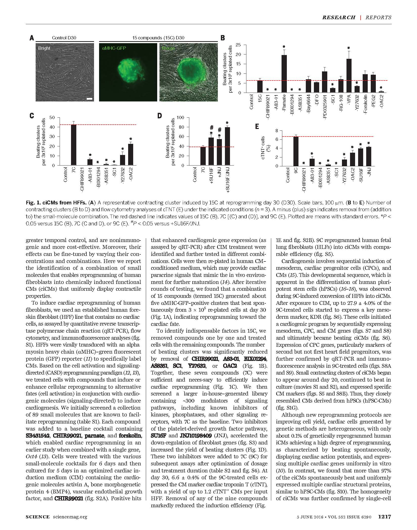 Conversion-of-human-fibroblasts-into-functional-cardiomyocytes-by-small-molecules-2.jpg