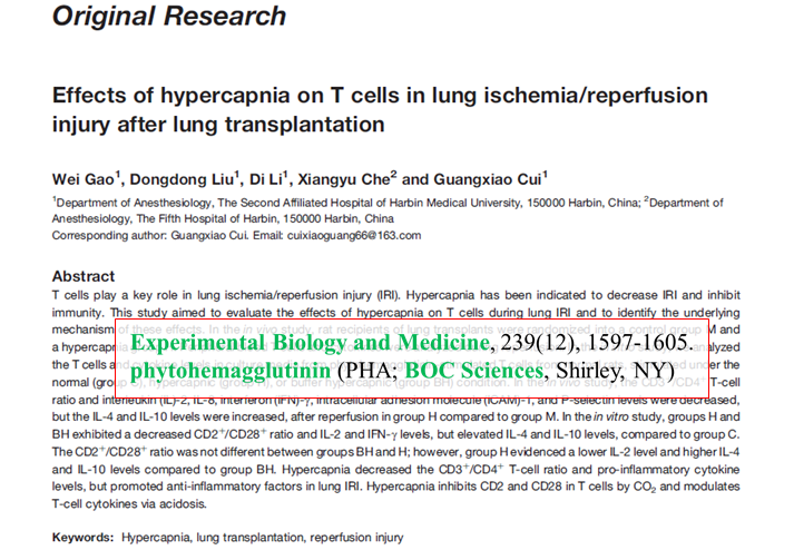 Effects-of-hypercapnia-on-T-cells-in-lung-ischemia-reperfusion-injury-after-lung-transplantation