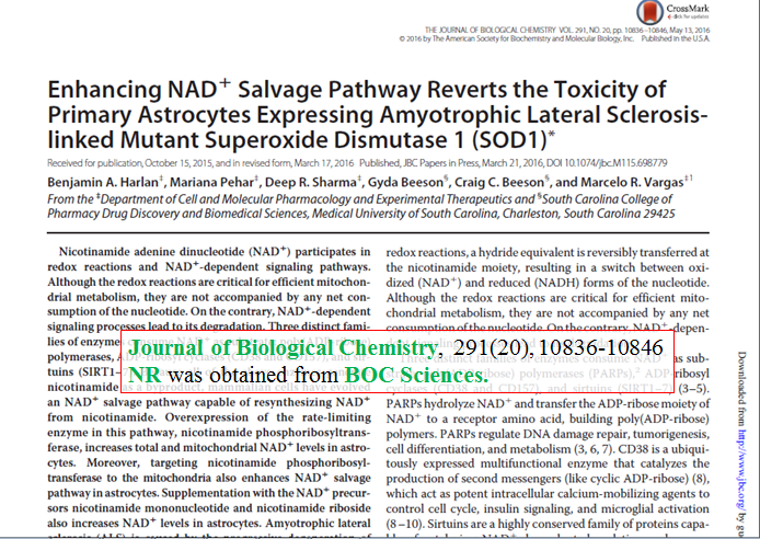 Enhancing-NAD-salvage-pathway-reverts-the-toxicity-of-primary-astrocytes-expressing-amyotrophic-lateral-sclerosis-linked-mutant-superoxide-dismutase-1-SOD1