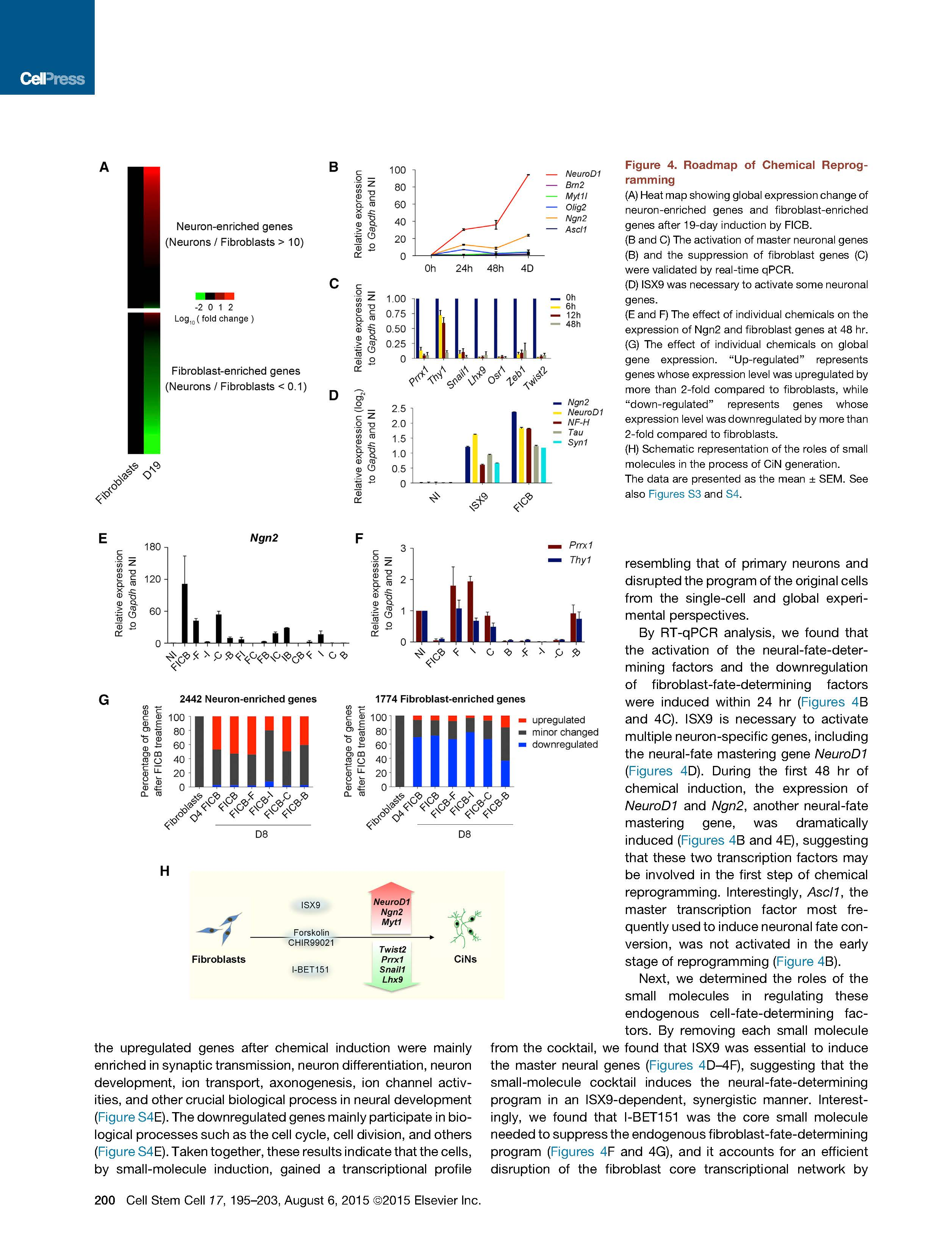 Small-Molecule-Driven-Direct-Reprogramming-of-Mouse-Fibroblasts-into-Functional-Neurons-7.jpg