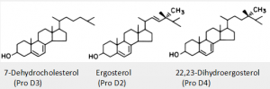 The sterol precursors of the most common of the known vitamin D substances